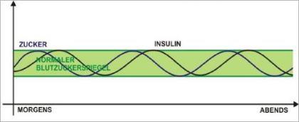 insulin diät frühstück